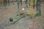 Grób żołnierza AK Henryka Antczaka