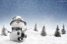 148262_balwanek_swierki_snieg_zima