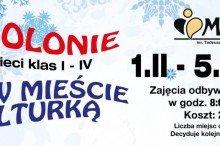 zima-w-miescie-z-kulturka-2016_160105_152003