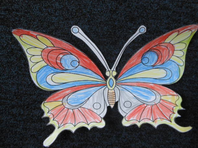 Markinetpl A Kto To Motyl