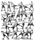Savate-technics