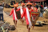 Wojownicy podczas ceremonii pogrzebowej w Tana Toraja