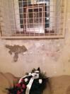 Cela nr 37   Rotmistrza Witolda Pileckiego w Pawilonie X na Mokotowie