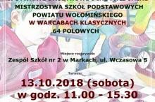 plakat_powiatowe_2018_mały